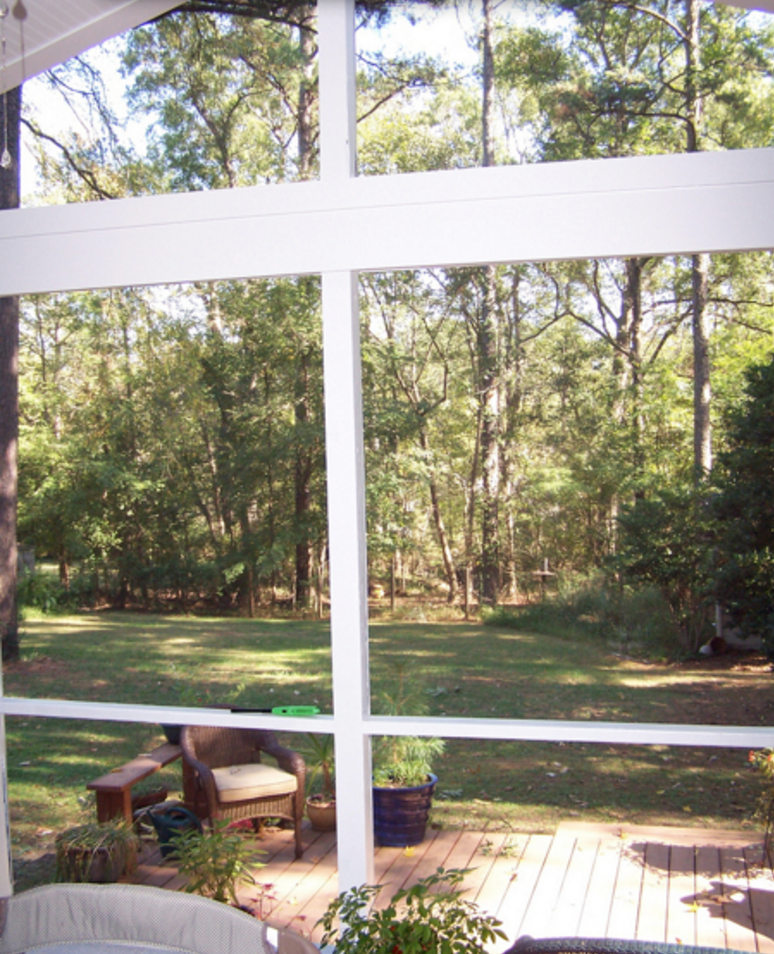 view from screened porch in Raleigh Durham home