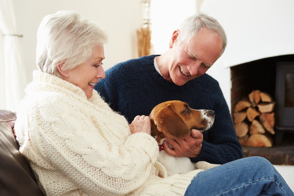 Senior Couple Relaxing At Home With Pet Dog